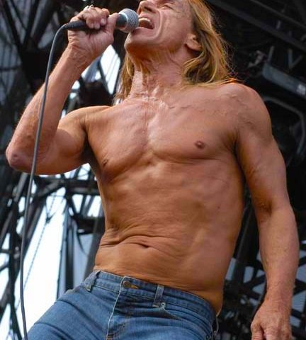 Iggy and the Stooges - Lollapalooza - Chicago, IL - 08/05/2007 - Photo © 2007 by: Beth Shandles