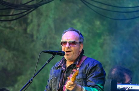 Elvis Costello And The Imposters Live