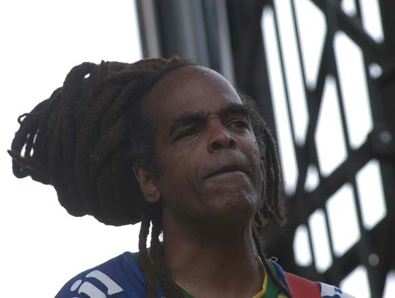 The Wailers Live at Lollapalooza [GALLERY] 4