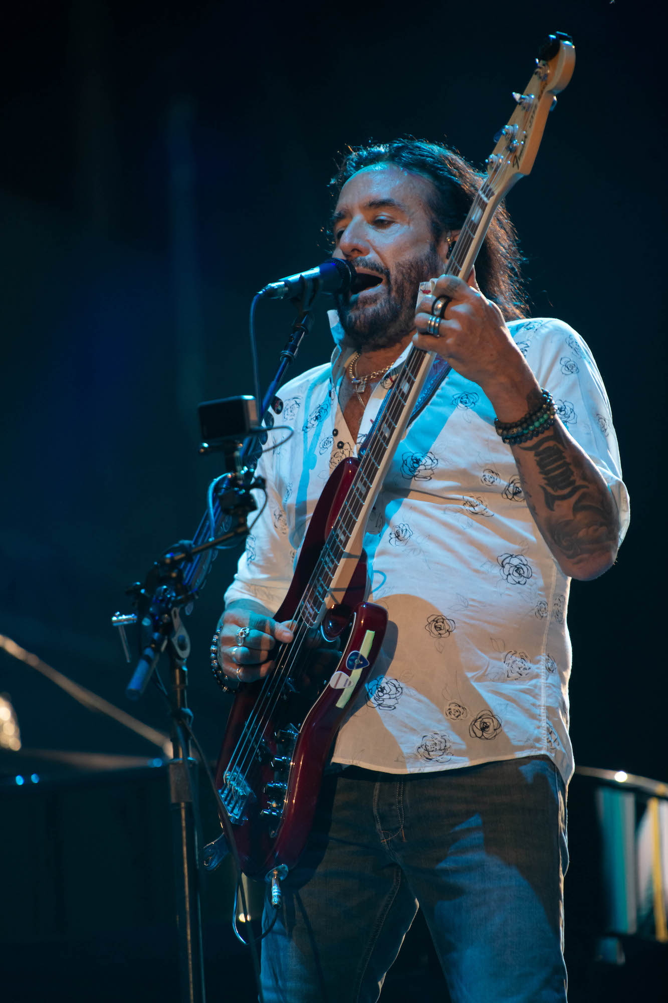 Journey Live at Lollapalooza [GALLERY] 8