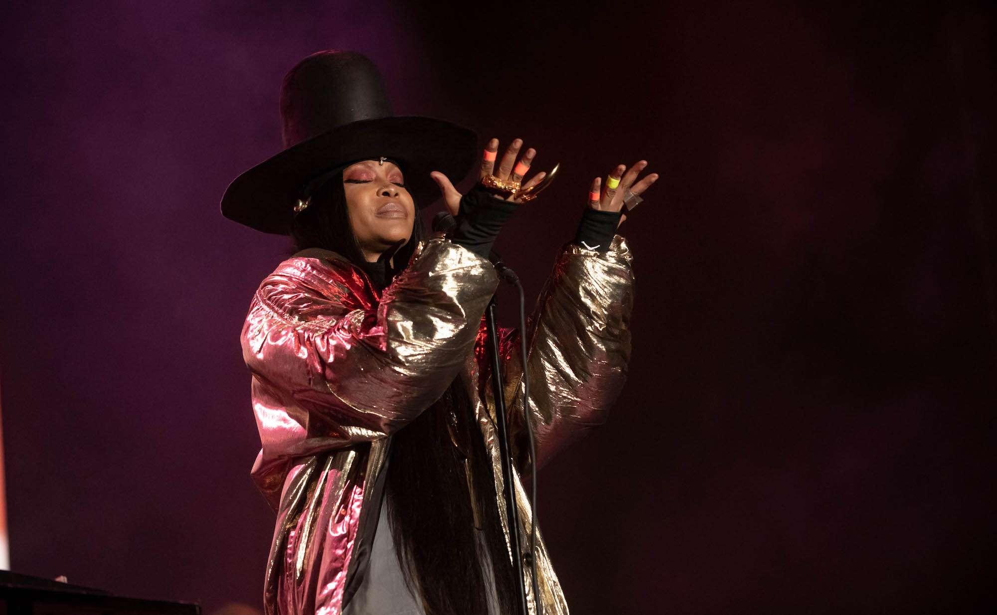 Erykah Badu Live at Pitchfork [GALLERY] 11